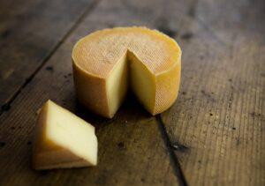 produceren van kaas